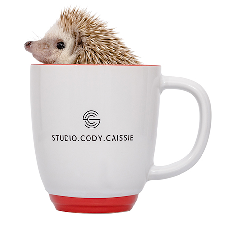 Company mascot Taco the Hedgehog